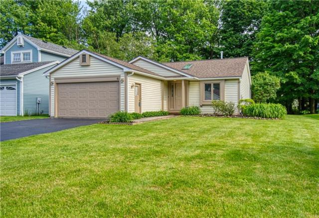 61 Winfield Lane, Webster, NY 14580 (MLS #R1202174) :: Updegraff Group