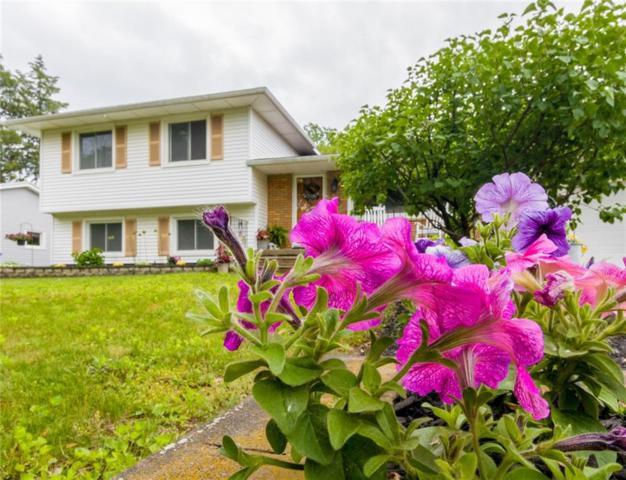 63 Frear Drive, Greece, NY 14616 (MLS #R1202551) :: The Glenn Advantage Team at Howard Hanna Real Estate Services