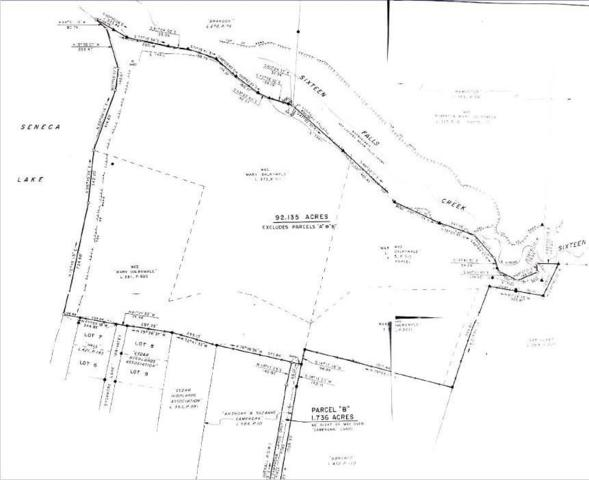 0 Combs Road, Ovid, NY 14521 (MLS #R1202557) :: Lore Real Estate Services