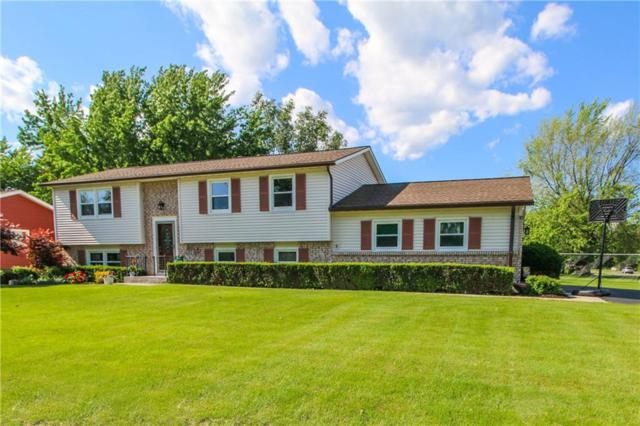 67 Applegrove Drive, Greece, NY 14612 (MLS #R1202750) :: Updegraff Group
