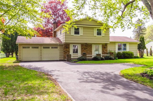 396 East Street, Pittsford, NY 14534 (MLS #R1203530) :: Robert PiazzaPalotto Sold Team