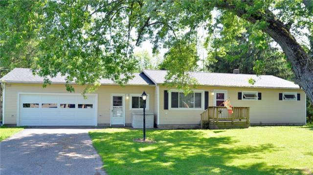 1265 Whitbeck Road, Arcadia, NY 14513 (MLS #R1203919) :: The Rich McCarron Team