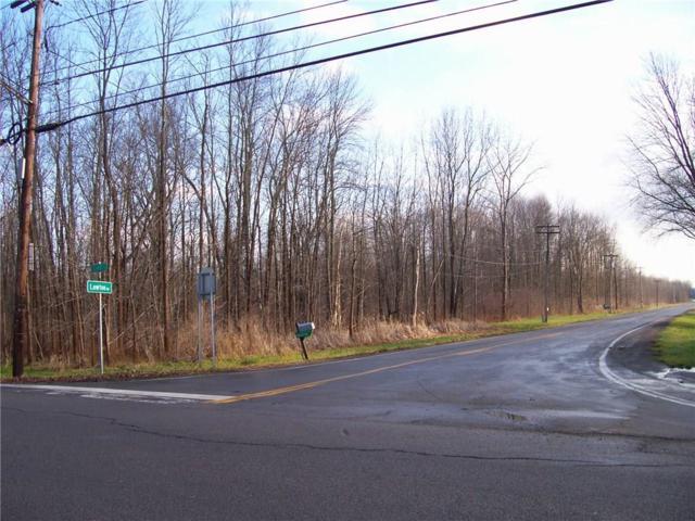0 Lake/Lawton Road, Clarkson, NY 14468 (MLS #R1204634) :: Robert PiazzaPalotto Sold Team