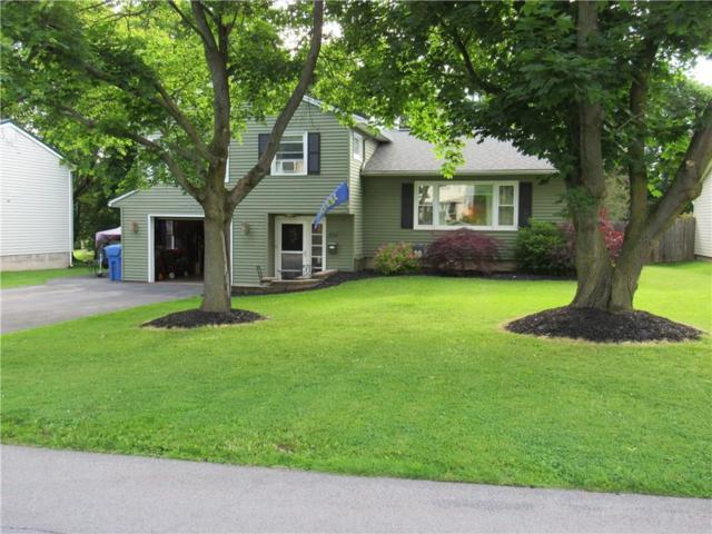 254 Edgett Street, Arcadia, NY 14513 (MLS #R1205052) :: The Rich McCarron Team