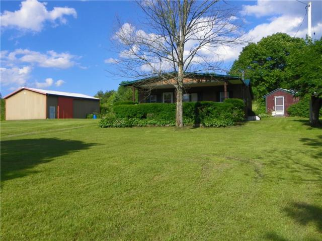 10776 Mattoon Road, Prattsburgh, NY 14873 (MLS #R1205773) :: 716 Realty Group