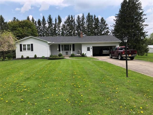 10122 Brookville Road, Alexander, NY 14005 (MLS #R1205874) :: The Rich McCarron Team