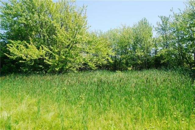 00 State Rt 89, Fayette, NY 13148 (MLS #R1207413) :: Updegraff Group