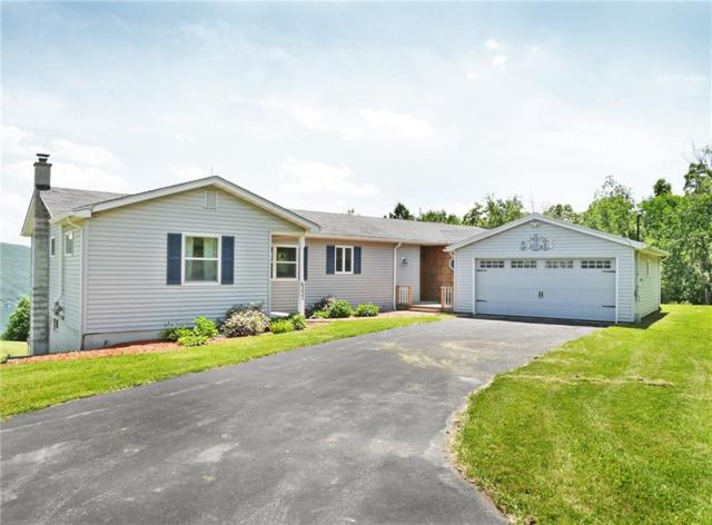 6233 State Route 21, South Bristol, NY 14512 (MLS #R1207559) :: The Rich McCarron Team