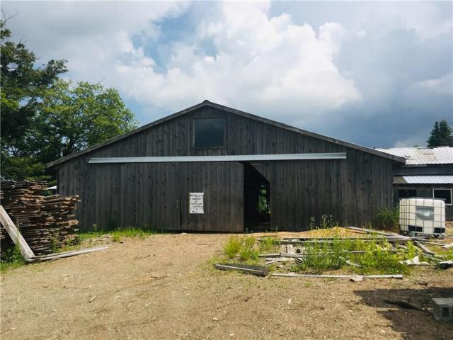 6604 Burdick Road, Chautauqua, NY 14757 (MLS #R1207575) :: Robert PiazzaPalotto Sold Team