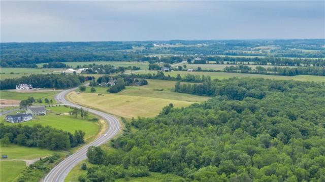 0 Lincoln Hill Road, Hopewell, NY 14424 (MLS #R1208972) :: The Rich McCarron Team