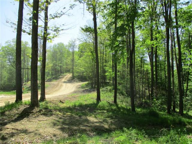 0 Geiger Hollow Road, Allegany, NY 14706 (MLS #R1208990) :: The Rich McCarron Team