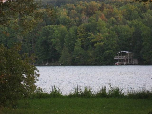 0 State Route 243, Rushford, NY 14777 (MLS #R1210697) :: Robert PiazzaPalotto Sold Team