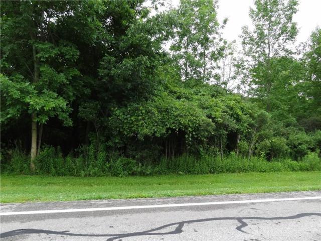 0 Whittier Road, Ogden, NY 14559 (MLS #R1210723) :: Robert PiazzaPalotto Sold Team