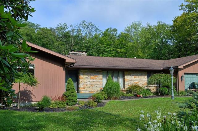 63 Fairwood Drive, Busti, NY 14750 (MLS #R1211370) :: Robert PiazzaPalotto Sold Team