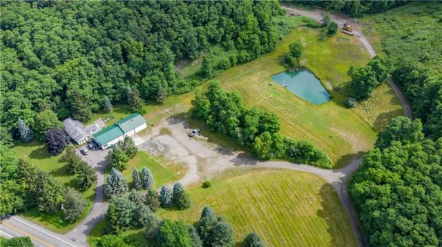 8749 State Route 53, Naples, NY 14512 (MLS #R1211783) :: 716 Realty Group