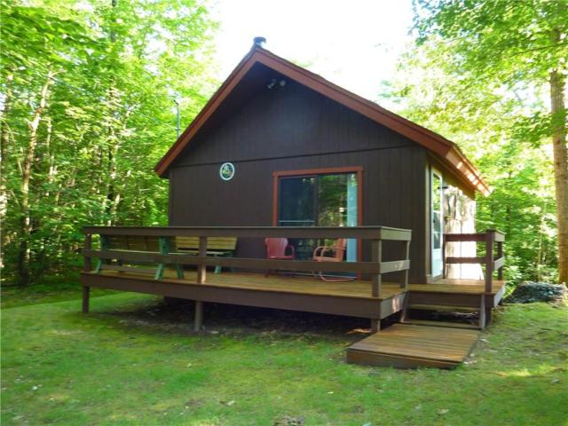 6850 Chief Canesque Lane, Springwater, NY 14560 (MLS #R1213856) :: 716 Realty Group