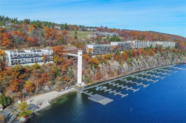 28 Cliffside Drive #28, South Bristol, NY 14424 (MLS #R1215046) :: Updegraff Group