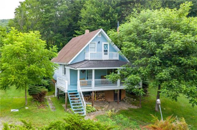 8943 Pardee Hollow Road, Springwater, NY 14572 (MLS #R1215611) :: Updegraff Group