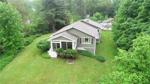 8656 State Route 53, Naples, NY 14512 (MLS #R1217539) :: 716 Realty Group