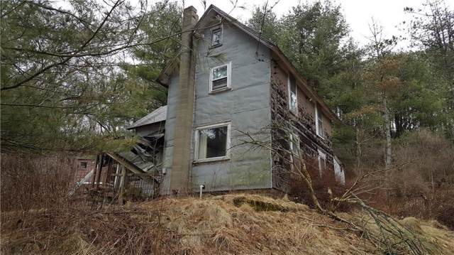 0 Nouvoo Road, Genesee, NY 14770 (MLS #R1225877) :: BridgeView Real Estate Services