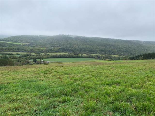 2396 Andover Road, Wellsville, NY 14895 (MLS #R1226695) :: The CJ Lore Team | RE/MAX Hometown Choice