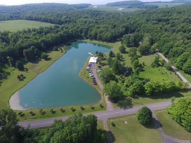 1179 Old State Road, Sterling, NY 13156 (MLS #R1227100) :: Updegraff Group
