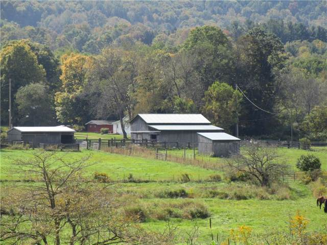 0 State Rte 417 & Ray Hill Rd, Andover, NY 14806 (MLS #R1227978) :: Robert PiazzaPalotto Sold Team
