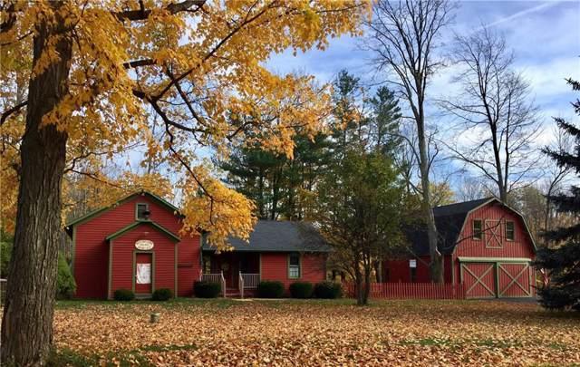 6022 County Route 69, Howard, NY 14823 (MLS #R1229092) :: The Glenn Advantage Team at Howard Hanna Real Estate Services