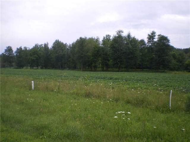 0 Lot 9 Greenfield Drive, Marion, NY 14505 (MLS #R1230838) :: MyTown Realty