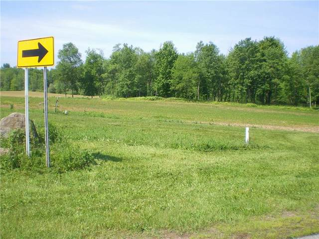 0 Lot 10 Greenfield Drive, Marion, NY 14505 (MLS #R1230905) :: MyTown Realty