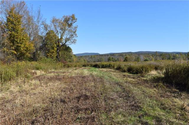 1702 Peck Settlement Road, Kiantone, NY 14701 (MLS #R1231849) :: Robert PiazzaPalotto Sold Team