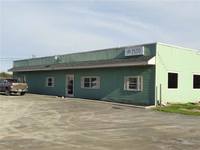 2403 State Route 21, Hopewell, NY 14424 (MLS #R1231974) :: 716 Realty Group
