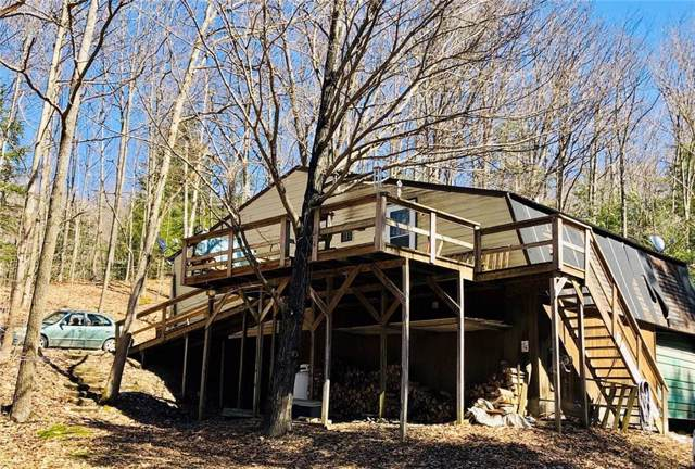 1757 Kurtz Hollow Road, Dansville, NY 14437 (MLS #R1232224) :: The CJ Lore Team | RE/MAX Hometown Choice