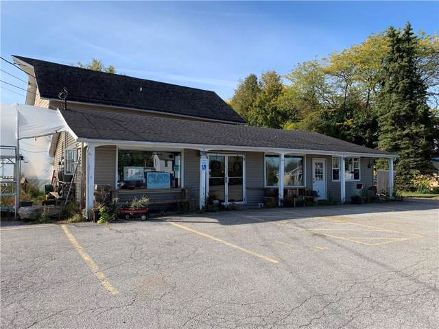 8089 W Ridge Road, Clarkson, NY 14420 (MLS #R1235810) :: Robert PiazzaPalotto Sold Team