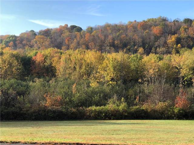 0 State Route 70 Highway, Grove, NY 14884 (MLS #R1236588) :: The CJ Lore Team | RE/MAX Hometown Choice