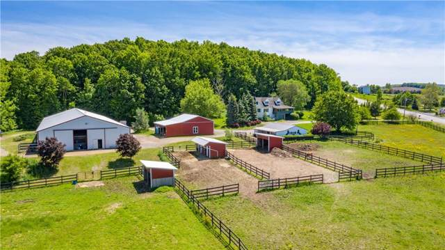 3301 Hopkins Road, Canandaigua-Town, NY 14424 (MLS #R1238821) :: BridgeView Real Estate Services