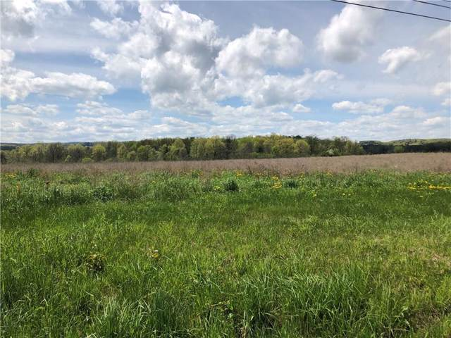0 State Route 14 Highway, Milo, NY 14842 (MLS #R1239642) :: Updegraff Group