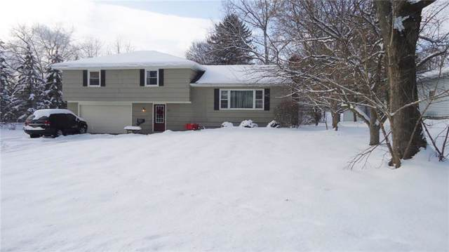 51 Hillcrest, Penfield, NY 14526 (MLS #R1240655) :: Robert PiazzaPalotto Sold Team