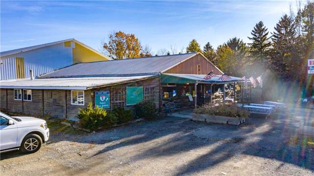 5806 State Route 414, Hector, NY 14841 (MLS #R1241206) :: Robert PiazzaPalotto Sold Team
