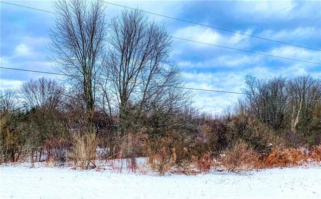 0 Maple Grove Road, Ellery, NY 14712 (MLS #R1241532) :: The CJ Lore Team   RE/MAX Hometown Choice
