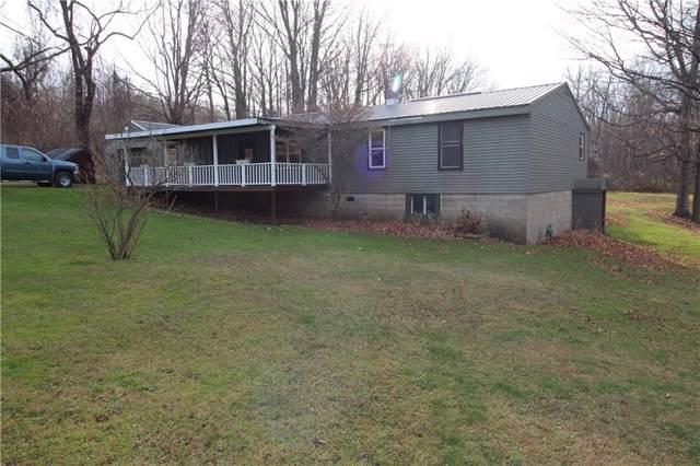 6303 Brockway Road, Ripley, NY 14775 (MLS #R1241866) :: BridgeView Real Estate Services