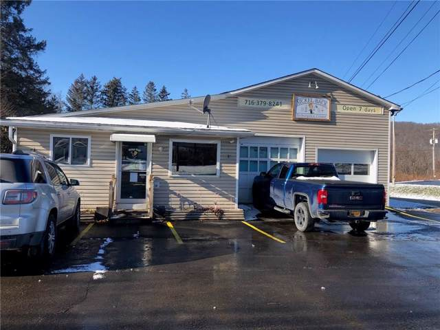 3505 Nys Route 16, Hinsdale, NY 14743 (MLS #R1242173) :: MyTown Realty