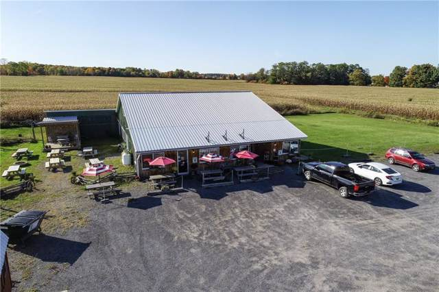 9632 State Route 96, Covert, NY 14886 (MLS #R1244574) :: Robert PiazzaPalotto Sold Team