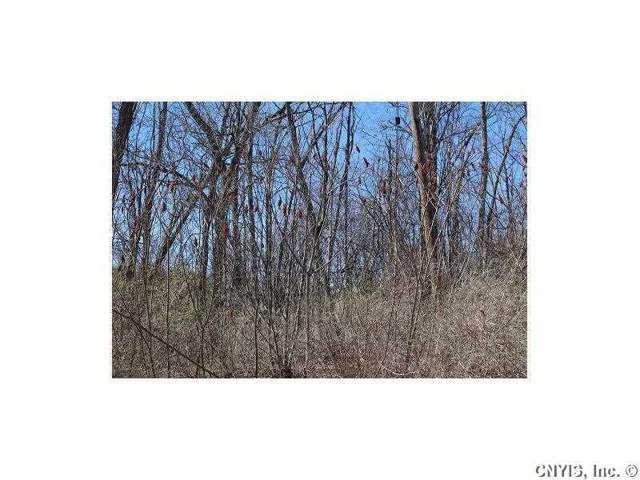 Lot 2 West Lake Road, Fleming, NY 13118 (MLS #R1245115) :: Updegraff Group