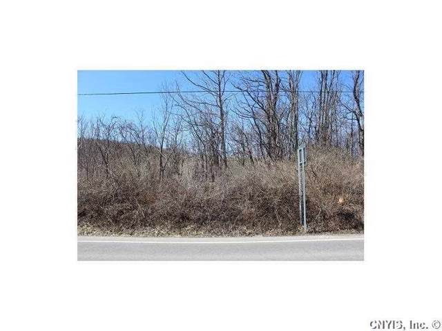 Lot 4 West Lake Road, Fleming, NY 13021 (MLS #R1245118) :: Updegraff Group