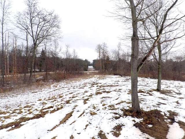 1739 Blue Sky Road, Waterloo, NY 13165 (MLS #R1245964) :: BridgeView Real Estate Services