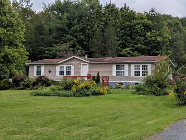 3168 State Route 215, Cortlandville, NY 13045 (MLS #R1246291) :: Robert PiazzaPalotto Sold Team