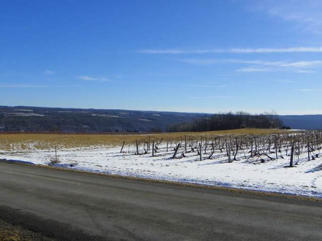 Lot #7 Wright Road, Pulteney, NY 14840 (MLS #R1246661) :: The CJ Lore Team | RE/MAX Hometown Choice