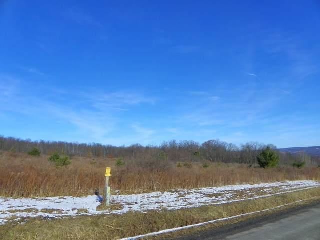 Lot #6 Wright Road, Pulteney, NY 14840 (MLS #R1246679) :: Thousand Islands Realty