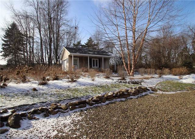 0 W Lake Road, Chautauqua, NY 14757 (MLS #R1247136) :: MyTown Realty
